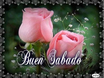 imagenes de rosas con frases de amistad lindas
