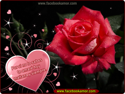 Postales De Flores Hermosas madres