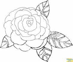 dibujos de flores hermosas colorear