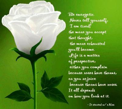 flores hermosas de amor con poemas