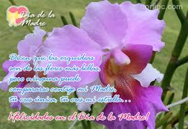 flores lindas con mensajes del dia de la madre