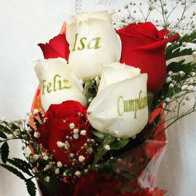 flores naturales fotos bonitas
