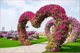flores naturales hermosas con figuras