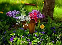 flores naturales hermosas