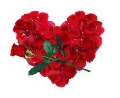 flores rojas hermosas con corazon