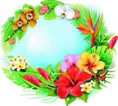 fotos de flores hermosas gratis exoticas