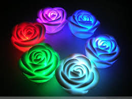 fotos de rosas de colores para descargar