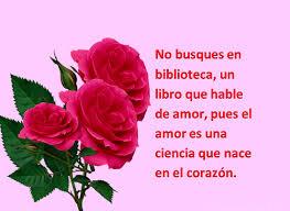fotos de rosas preciosas con frases