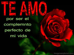 fotos de rosas preciosas de te amo