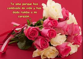 fotos de rosas preciosas para compartir