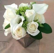 imágenes de flores blancas naturales