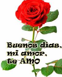 imagen de una rosa hermosa para buenos dias