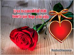 imagenes de hermosas rosas