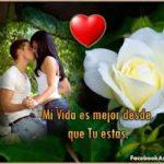 Imágenes De Rosas Blancas Hermosas Con Frases De Amor