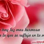Imágenes De Rosas Rojas De Amor Con Frases Románticas