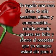 imagenes hermosas de rosas rojas