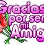 Mira Hermosas Rosas Con Frases De Amistad Para Una Amiga