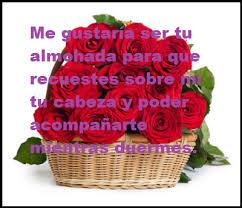 rosas con poemas de amor dama