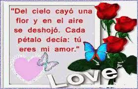 rosas con poemas de amor rojas