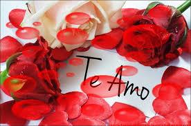 rosas hermosas con frases de amor cortas