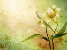Flores para fondo de pantalla naturales