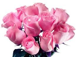 Fotos de rosas hermosas para mi novia