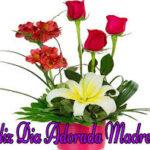 Imágenes De Flores Lindas Para Compartir Con Mis Amigos