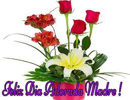 Imágenes de flores lindas para mama