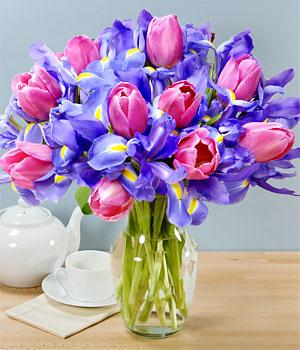 imágenes de flores d colores para regalarle a mi esposa