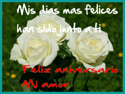 flores blancas para un aniversario de amor