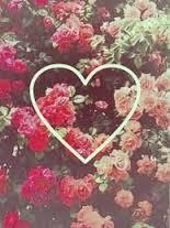 fondos de pantalla de rosas para el celular