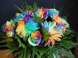fotos de flores bonitas para regalar