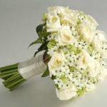Lindas Fotos De Rosas Blancas Para Regalar A las Madres