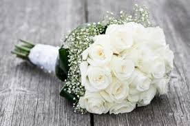 fotos de rosas blancas para mi suegra