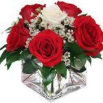 Imágenes De Amor Con Flores Rojas Para Dedicar A Mi Novia