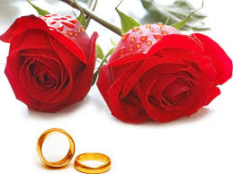 imagenes con rosas y anillos