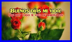 imagenes de flores con frases bonitas el mejor dia