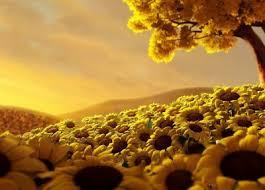 imagenes de flores gratis para descargar