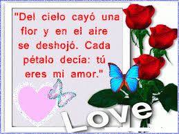 imagenes de rosas rojas hermosas con poemas