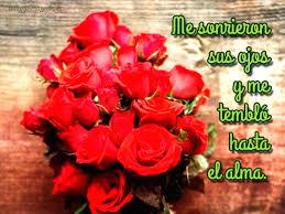 imagenes de rosas rojas hermosas romanticas