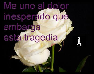 flores blancas con frases de luto