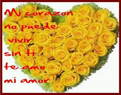 fotos de flores amarillas con frases de amor