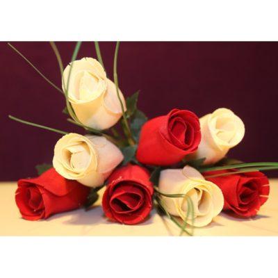 fotos-de-rosas-rojas-y-blancas