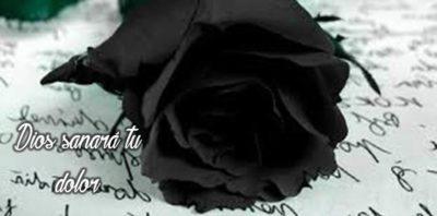 imagen-de-una-rosa-negra-de-luto