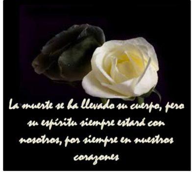 Imágenes De Rosas Negras Con Frases Abrazo Triste Frases Y
