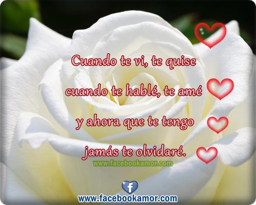 Hermosas Imagenes De Rosas Blancas Grandes Para Facebook Imagenes
