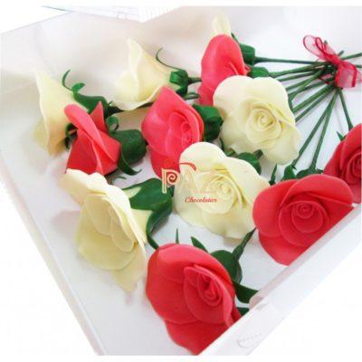 imagenes-de-rosas-blancas-y-rojas