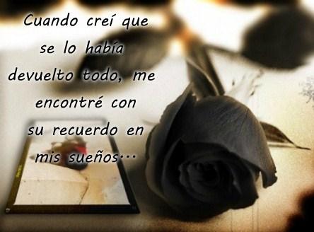Imágenes De Rosas Negras Con Frases Tristes Luto Desilusión