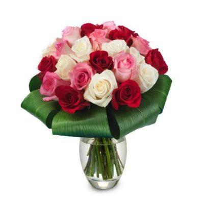 imagenes-de-rosas-rojas-y-blancas