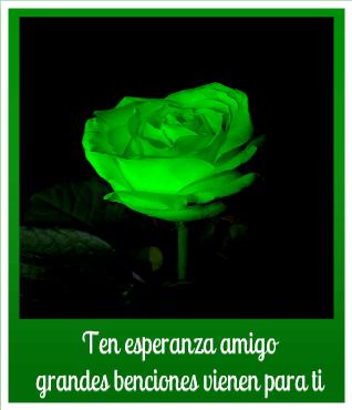 Imágenes De Rosas Verdes Hermosas Para Desear Esperanza Y